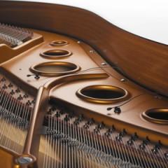DPA 4061 in Piano